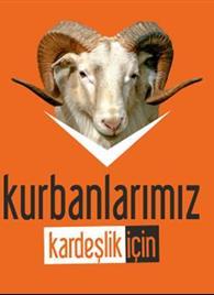 T.D.V KURBAN